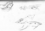 tarongazoo sketches3 LR