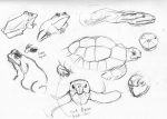 tarongazoo sketches5 LR