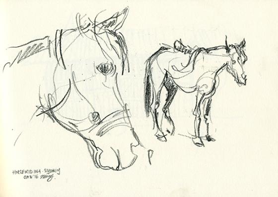 Loop_horseriding_LR