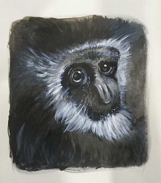 monkey_finished