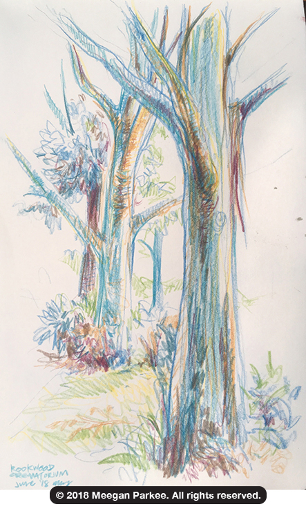 Colour_pencil_on_location_Rookwood_1